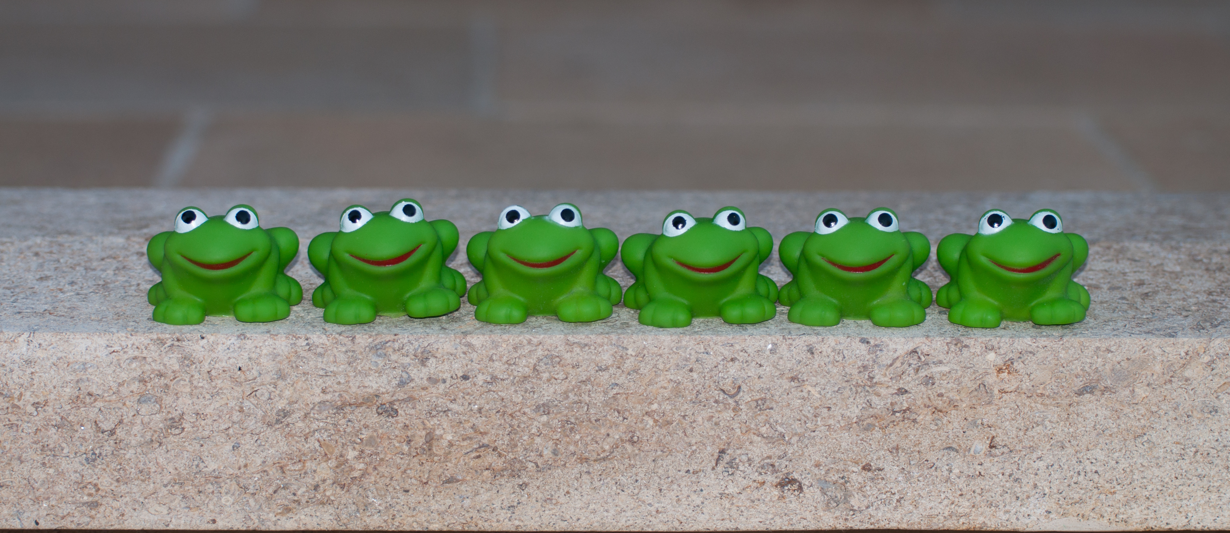 The six frogs and decision making