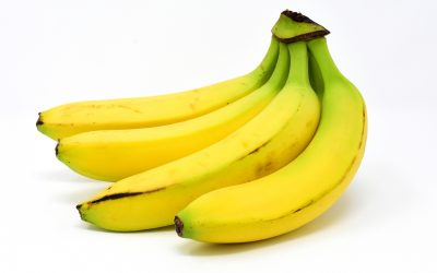 The Gorillas, bananas and hosepipe: How we embed & learn behaviour
